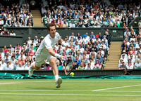murray-v-pospisil