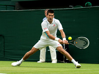 Djohovic-v-stepanek