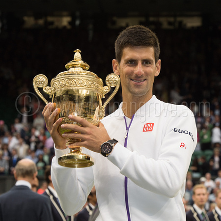 Novak Djokovic Wimbledon Chapion 2015 triumphant with trophy.