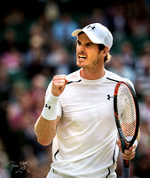 Andy Murray, Wimbledon Tennis 06/07/2016.