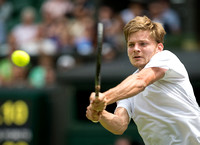 David-Goffin-possibles