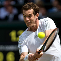 Murray-v-Dimitrov